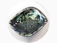 Abalone schelp ~ geurhout.nl ~ palo santo & witte salie