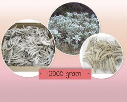 witte salie 2000 gram ~ geurhout.nl