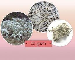 witte salie 25 gram ~ geurhout.nl
