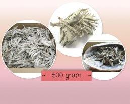 witte salie 500 gram ~ geurhout.nl