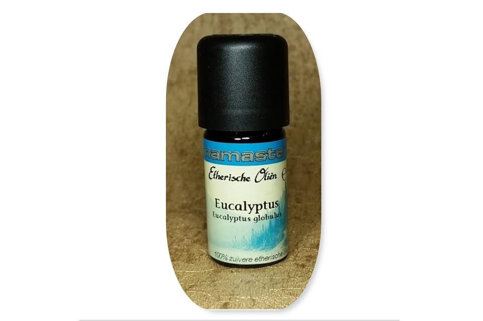 Eucalyptus olie ~ geurhout.nl