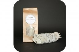Witte Salie smudge stick medium ~ geurhout.nl