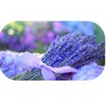 french lavendel ~geurhout.shop