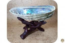 Abalone schelp middel op cobra standaard klein ~ geurhout.shop